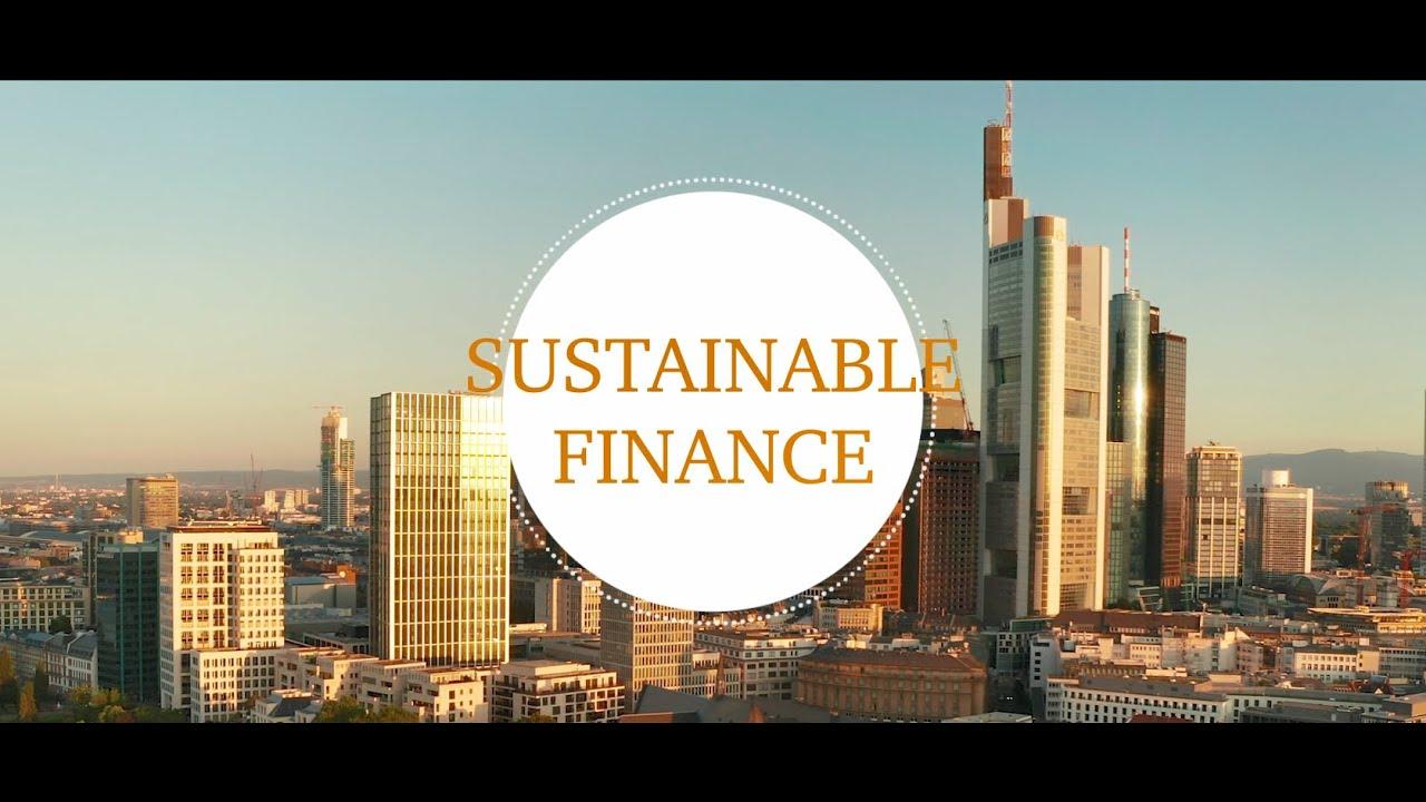 Sustainable Finance in der Finanzindustrie