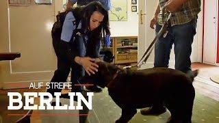 Hund rettet Leben: Was ist mit der Tante passiert? | Auf Streife - Berlin | SAT.1 TV