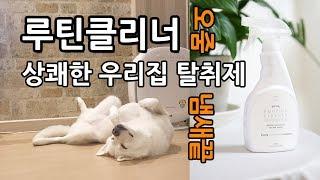 루틴클리너 강아지 고양이 오줌냄새 제거 탈취제 리뷰 암…