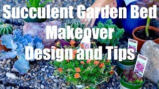 Succulent Garden Bed Makeover  - Design and Easy Growing Tips - Part 1