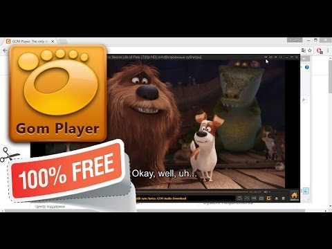 Самый лучший видеоплеер для Windows - GOM Player - free media player