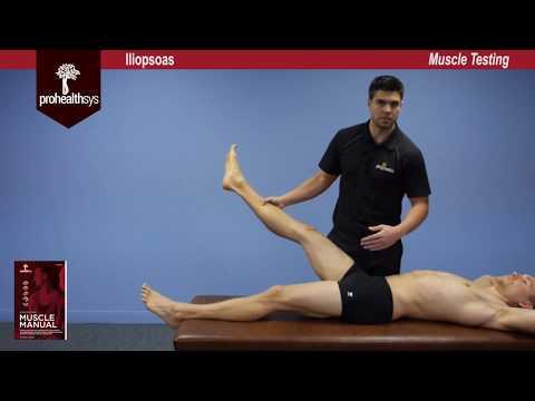 Iliopsoas Muscle Test Vizniak
