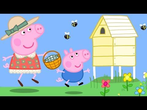 Peppa Pig en Español Episodios completos -  Peppa Pig Abejas y miel! - Dibujos Animados