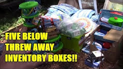 'WHALE' of a Dive!  *Boxes of Brand New TOYS / DECOR and BEACH GEAR!