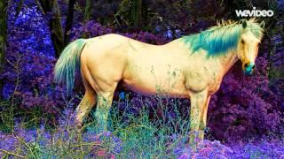 Laid Back - White Horse (Ida Corr Remix)