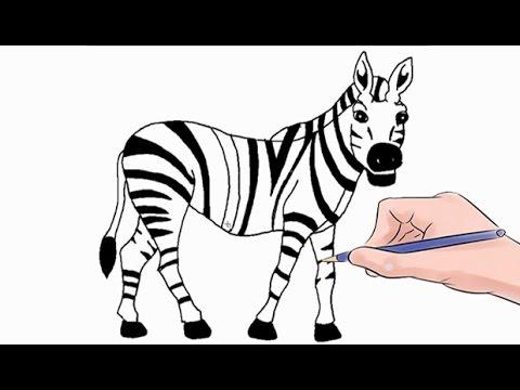 How To Draw A Zebra Easy Step By Step Youtube