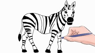How to Draw a Zebra Easy Step by Step