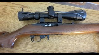 Ruger 10/22 Carbine Liberty Training Rifle