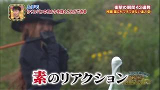 ヌンチャクvsムチの達人 すご技対決!第1弾