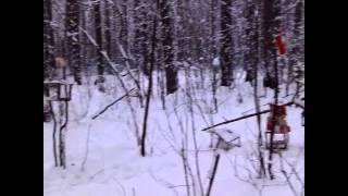 Урааа, видео.(^_^) Красота природы! Зимний лес!(Долгожданное видео. Прошу прощения за то что не было видео. ^_^ !!! Если вам понравилось видео, ставьте лайки...., 2015-11-28T13:16:50.000Z)