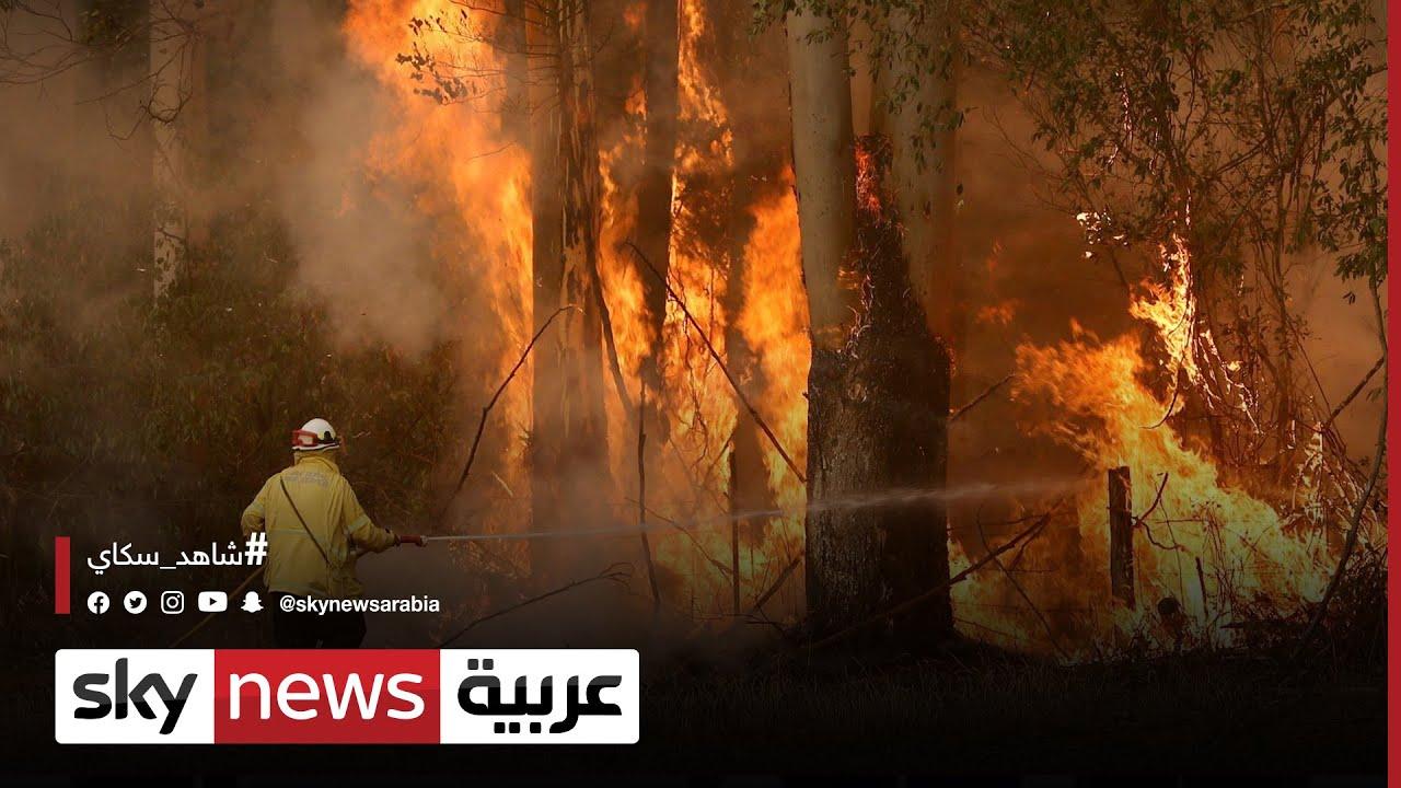 لبنان.. حرائق ضخمة في منطقة عكار شمالي البلاد | #مراسلو_سكاي  - نشر قبل 2 ساعة