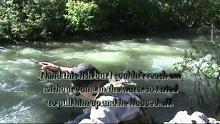 Stanislaus River Middle Fork in July (High River)