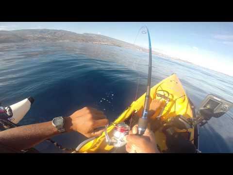 seriole en kayak