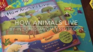 Book Review - How Animals Live by Templar UK from Limma.co.id