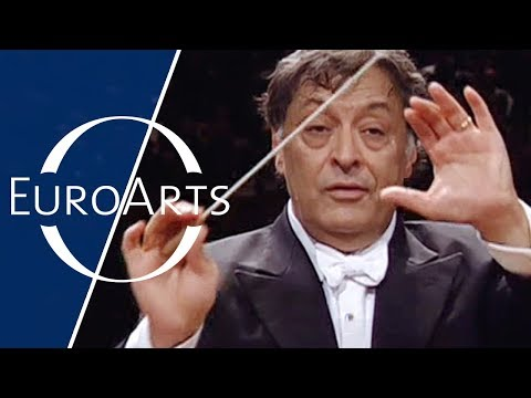 Brahms - Symphony No. 2 in D major, Op. 73 (Zubin Mehta & Israel Philharmonic Orchestra)