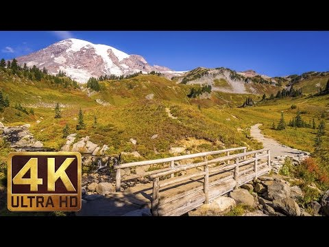 Mount Rainier National Park. Episode 2 - 4K Nature Documentary Film