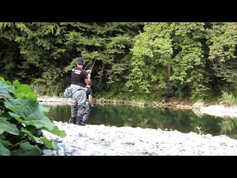 Huge Trout Fly fishing From Slovenia