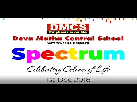 DMCS Vidyaranyapura Annual Day 2018-19