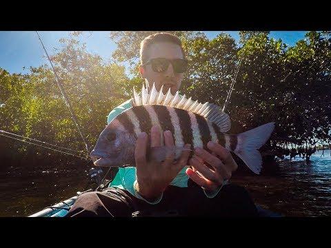 Catching 9 Species Winter Kayak Fishing Matlacha Island Florida - Episode 16