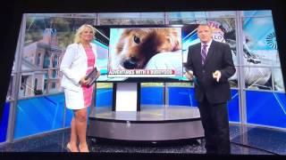 My dear friend Carl Owens my Amarillo running buddy and his buddydog!!!! TV News celebrities!!!