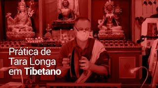 Prática de Tara Longa
