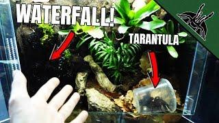 i-made-a-waterfall-for-my-tarantula