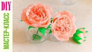 Английская РОЗА ИЗ БУМАГИ / Crepe paper ROSE / DIY NataliDoma