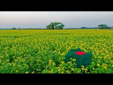 National Anthem of Bangladesh, Amar Shonar Bangla with Lyrics