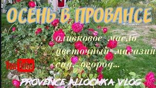 Розы в Октябре/Как делают Оливковое  Масло/Холодный Салат из Макарон