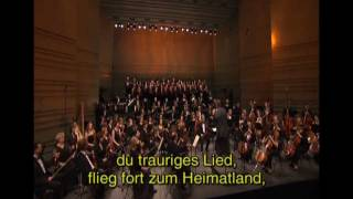 Borodin-PRINZ IGOR-PolowetzerTänze/Polovetsian Dances
