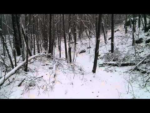 Émile Beauceron Nelligan - Ah comme la neige a neigé