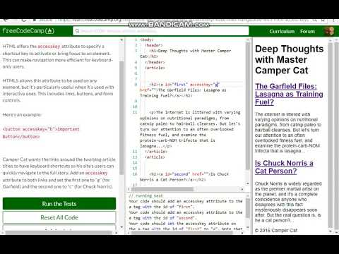 Applied Accessibility Make Links Navigatable With HTML Access Keys Free Code Camp   Dani