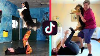 RECREATING DOG TIK TOK VIDEOS