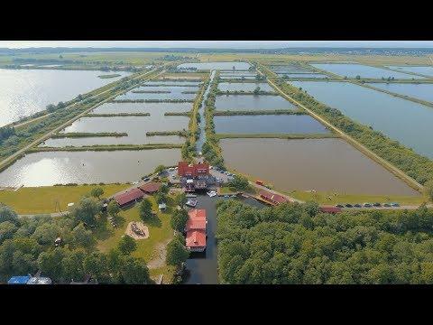 CARP Fishing Lithuania / Kintai / Silute district