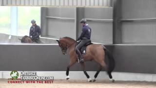 Dressage training with Garreth Hughes, How to improve the trot