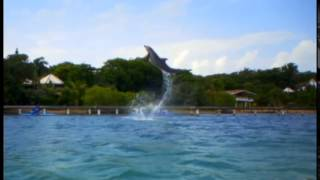 THE NEW ROATAN TOURISM COMMERCIAL