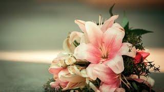 Свадьба Киев Свадебный фотограф Киев / Весільний фотограф(, 2016-02-22T18:23:00.000Z)