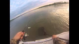 Ловля леща и язя на Оби с лодки или июнь, Обь, лодка, Язь, лещ, (Рыбалка 12 июня 2013)