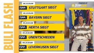 16. Spieltag - Legat setzt auf Debut-Sieg für Stöger   XTiP FUN HD