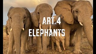 ART (and HEARTS) FOR ELEPHANTS - A FUNDRAISER & Competition! PLEASE HELP US RAISE MUCH NEEDED FUNDS!