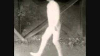 Ian Lurgee - My Bloody Valentine /Liquid Surface Recordings/
