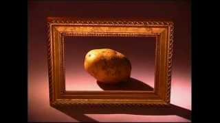 «Картошка» из цикла «Российский гербарий»