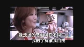 梁靜茹-愛情之所以為愛情 [KTV] (HD)