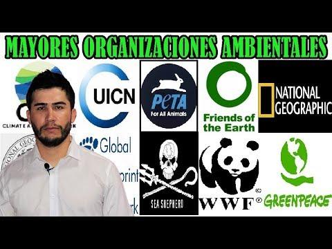 Las Organizaciones Ambientales Más Importantes