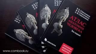 видео Анатомия человека - интерактивный атлас систем организма