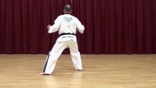 TAGB TAEKWONDO White Belt Beginner Exercise Saju Jirugi 15 Moves