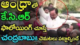 Huge Fans Following For KCR in Tirupati Tour | Kcr In Andhra Pradesh | Eagle Movies