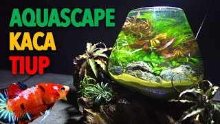 AQUARIUM KACA TIUP - Aquascape Cupang