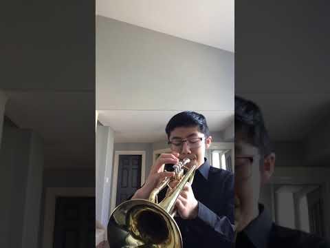 Cantina Band Trumpet #shorts