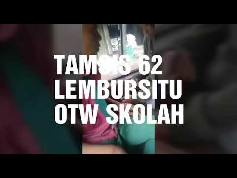 Download STM TAMSIS 62 LBS&BRS